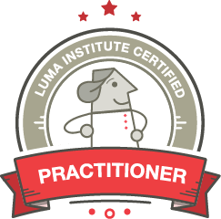 Practitioner Certification icon